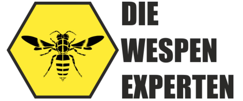 Wespenexperte